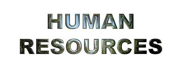 인적 자원 개발