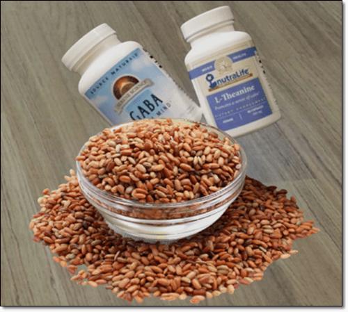 가바쌀과 보충제