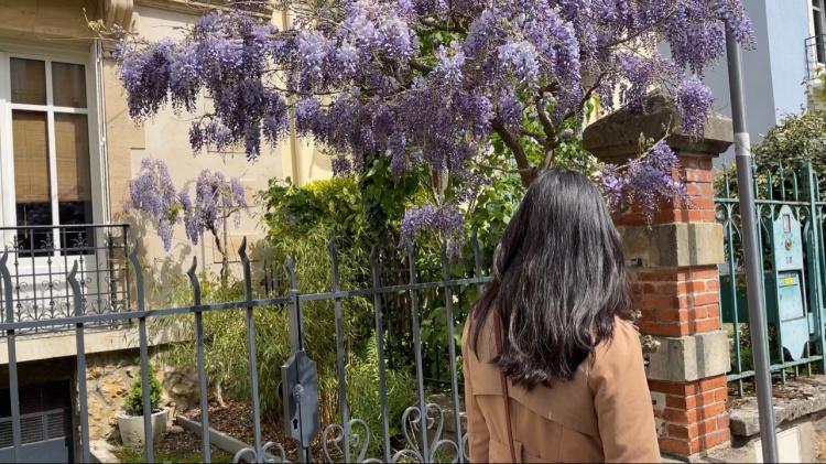시어머니와 공원 꽃축제 나들이