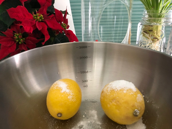 레몬커드만들기
