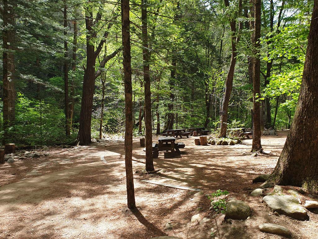 월정사 전나무 숲길의 쉼터