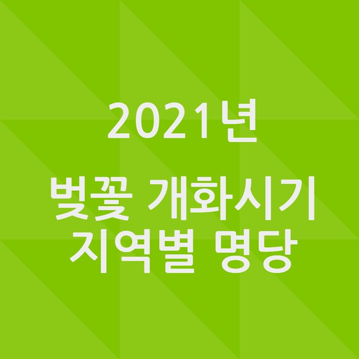 2021 벚꽃 개화시기