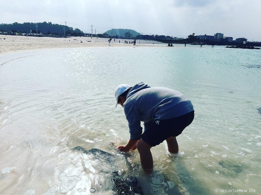 김녕해수욕장