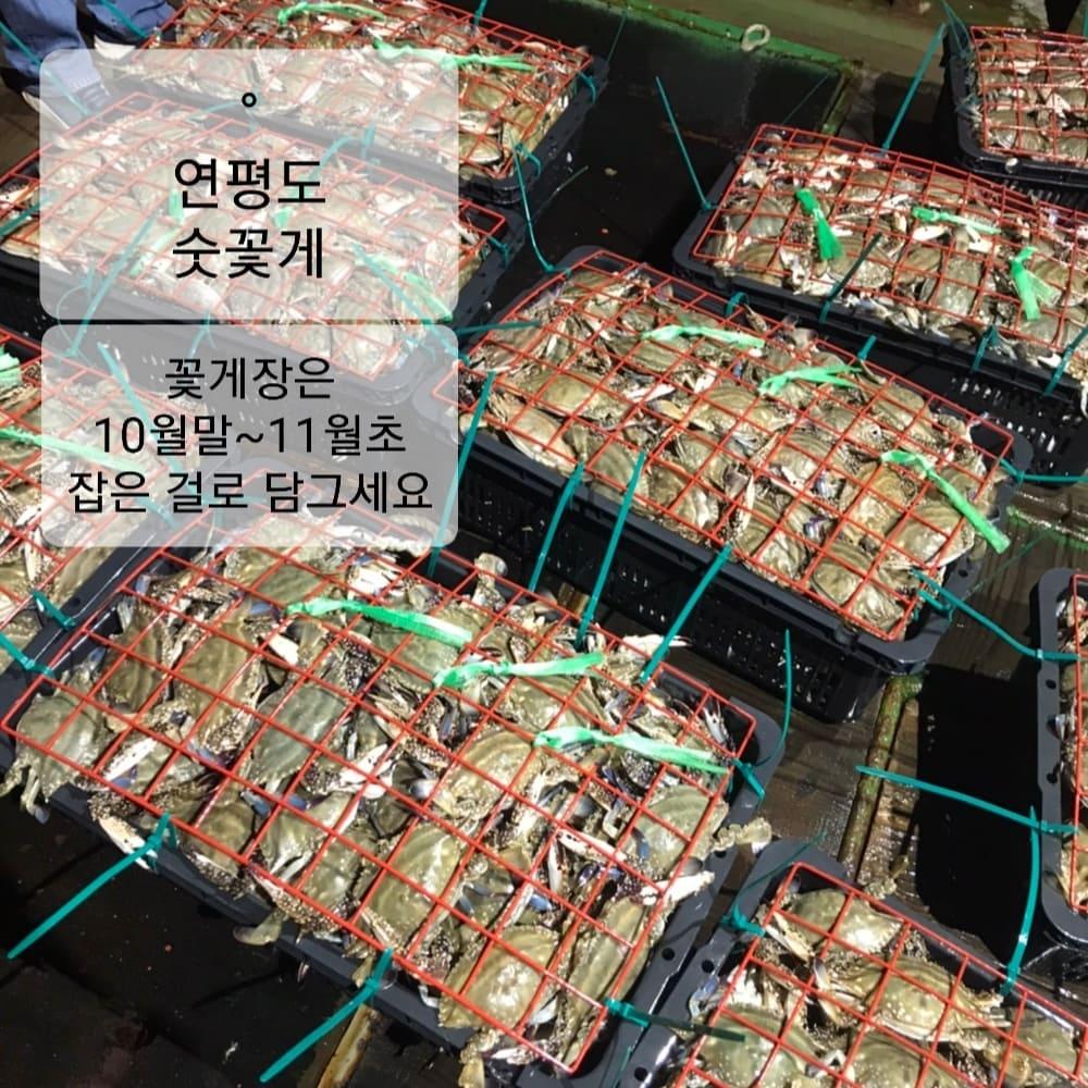 생물 택배 오늘 마감/일반 택배 내일 마감