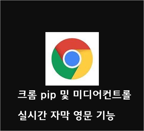 크롬 pip 및 미디어컨트롤 동영상 실시간 자막 영문