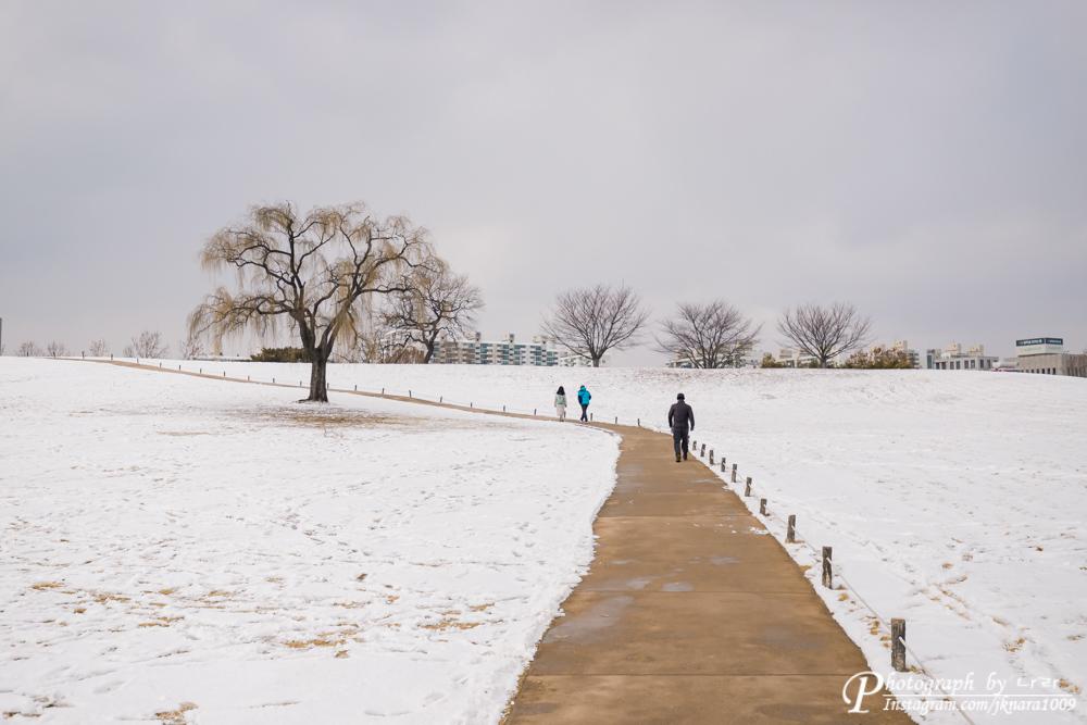 올림픽공원 산책
