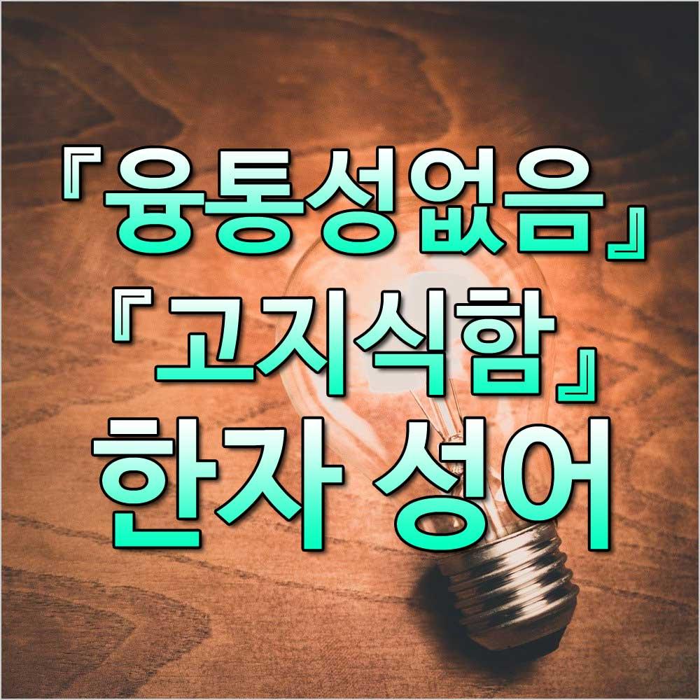 융통성없음사자성어