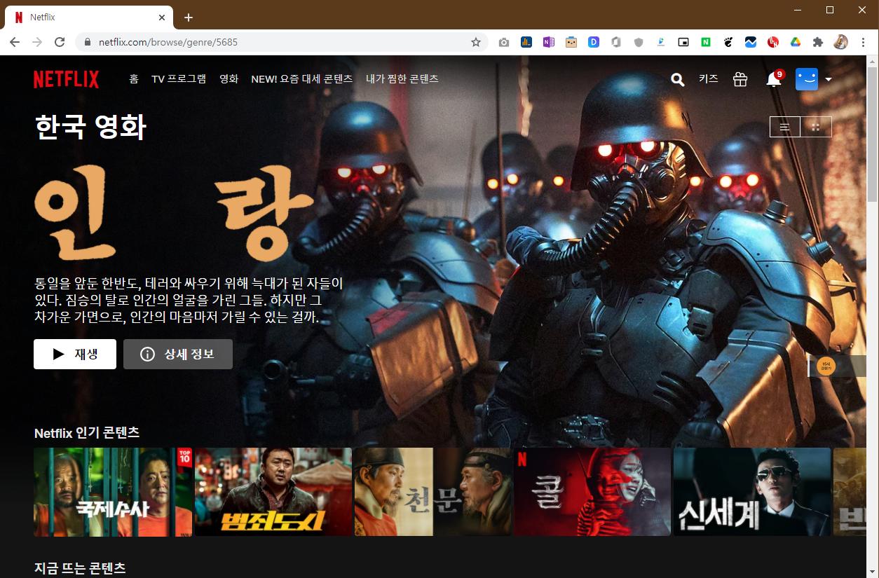 넥플릭스 한국영화 카테고리