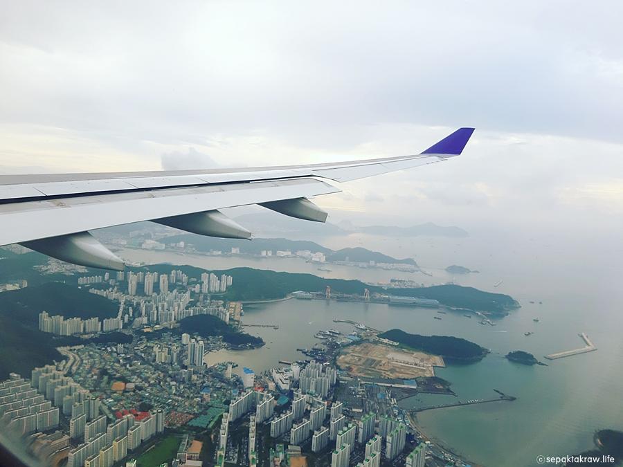 타이항공기내에서바라본부산의모습