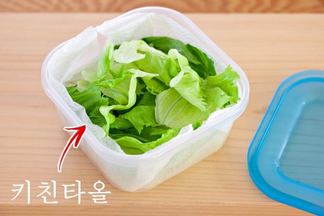 양상추 보관법, 시든 상추 살리는방법, 시든 채소 싱싱하게, 얼음물 양상추, 팁줌 매일꿀정보
