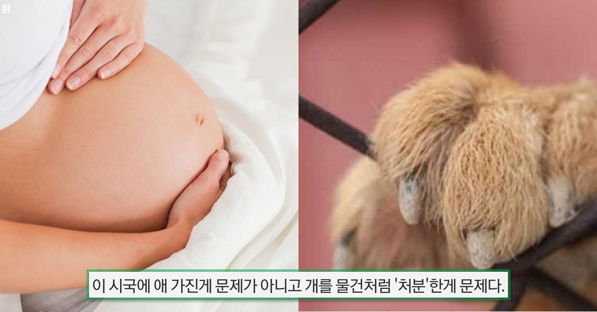 남편 350월급으로 아기 갖으면 죄인가요?