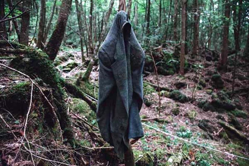 소름돋는 죽음의 숲 일본 '아오키가하라'(주카이 숲)