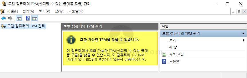TPM 버전 확인