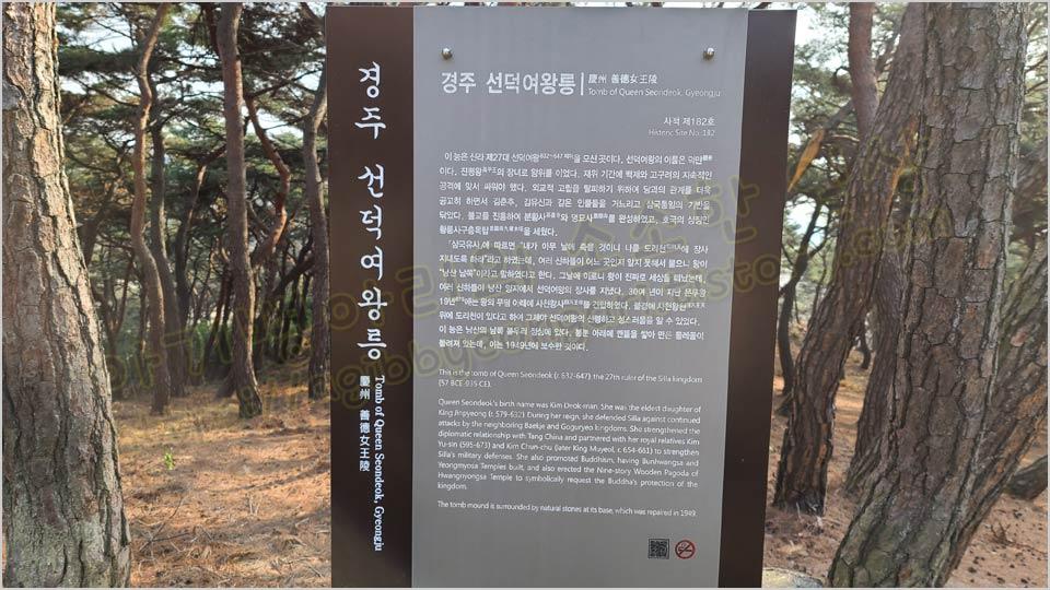선덕여왕릉