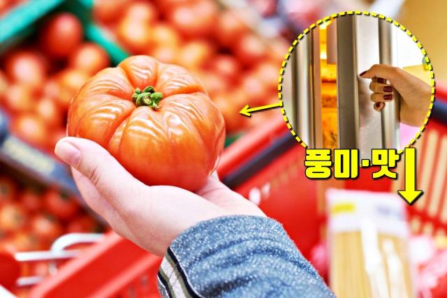 토마토 냉장고 보관해도 되나요?, 팁줌마 매일꿀정보