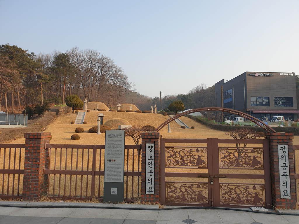 서울시 기념물로 지정된 방학동 은행나무
