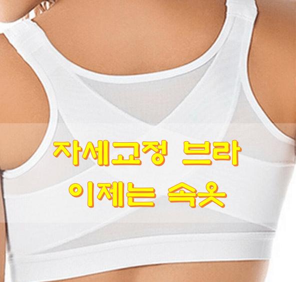 자세교정-브라