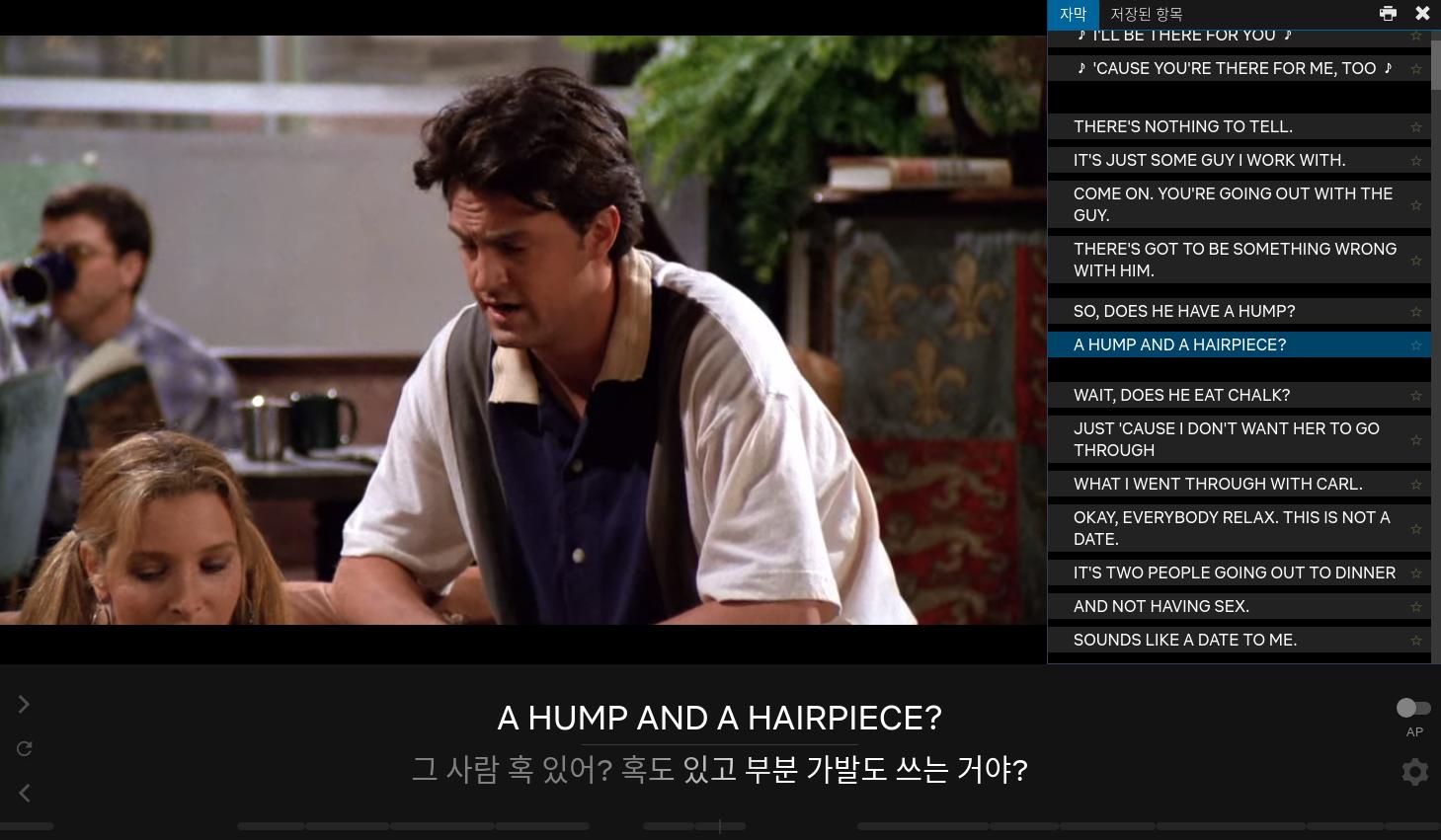 넷플릭스 영어공부 크롬 확장프로그램