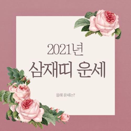 2021년-삼재띠-1