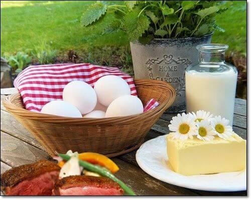 달걀과 유제품