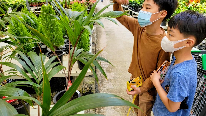용인 식물원 대신 가볼만한 남사화훼단지 에르베플라워아울렛 사진4