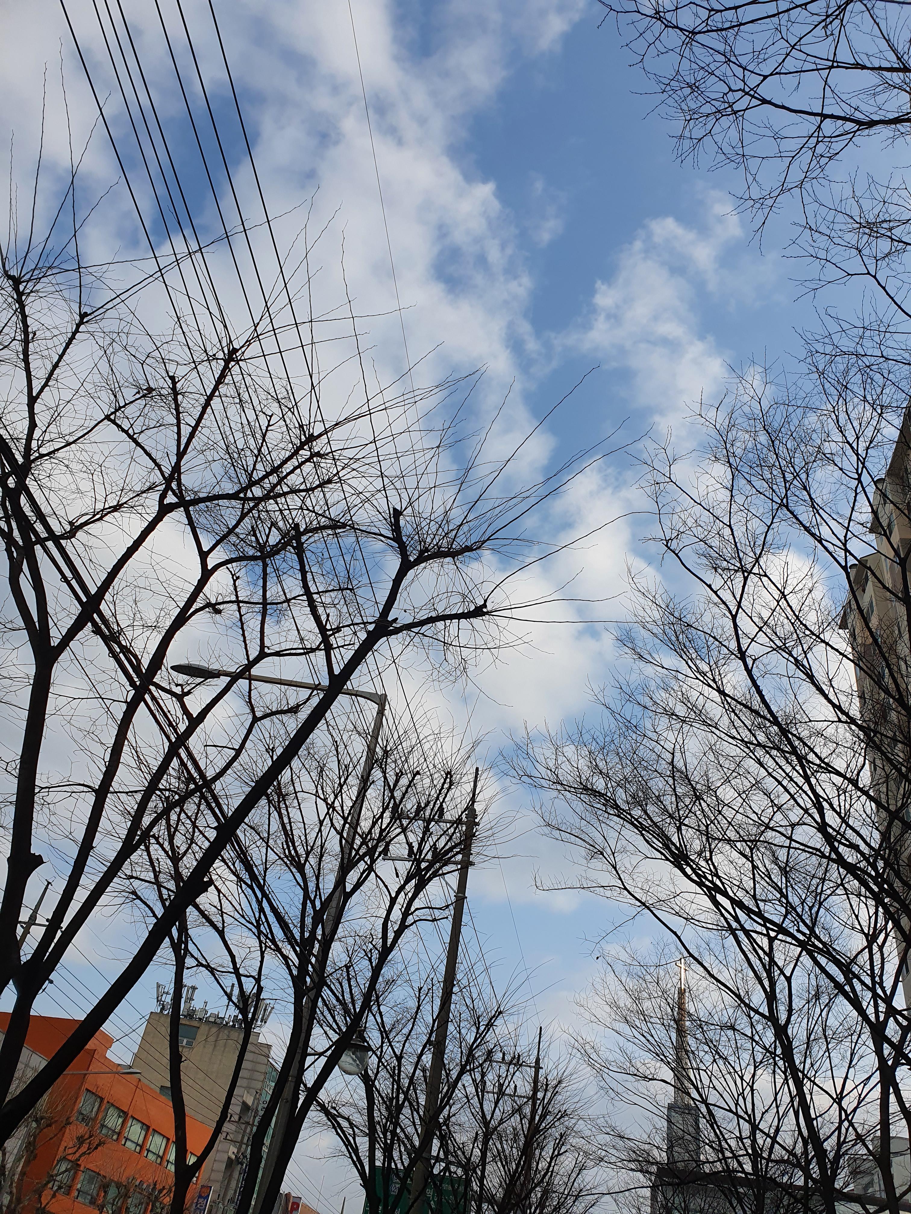 고운 하늘, 구름과 함께 두둥실