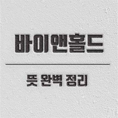 바이앤홀드 개념 소개