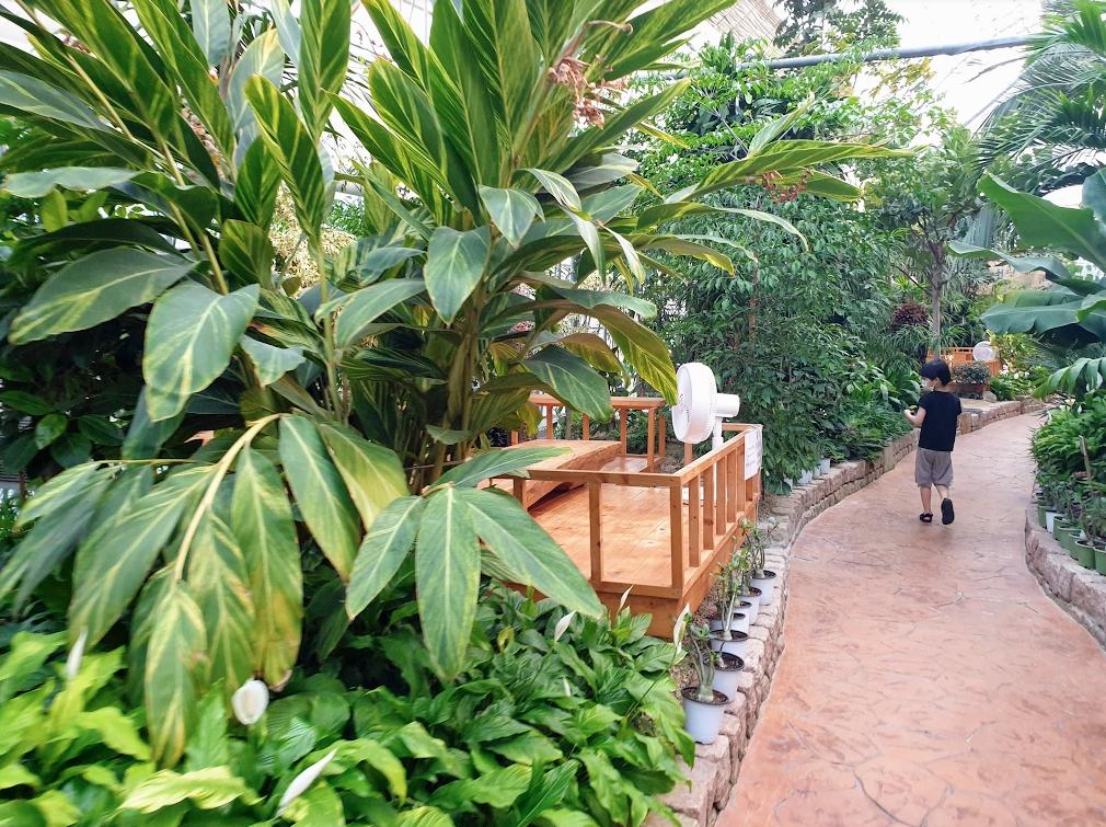 바오밥식물원베이커리카페 후기