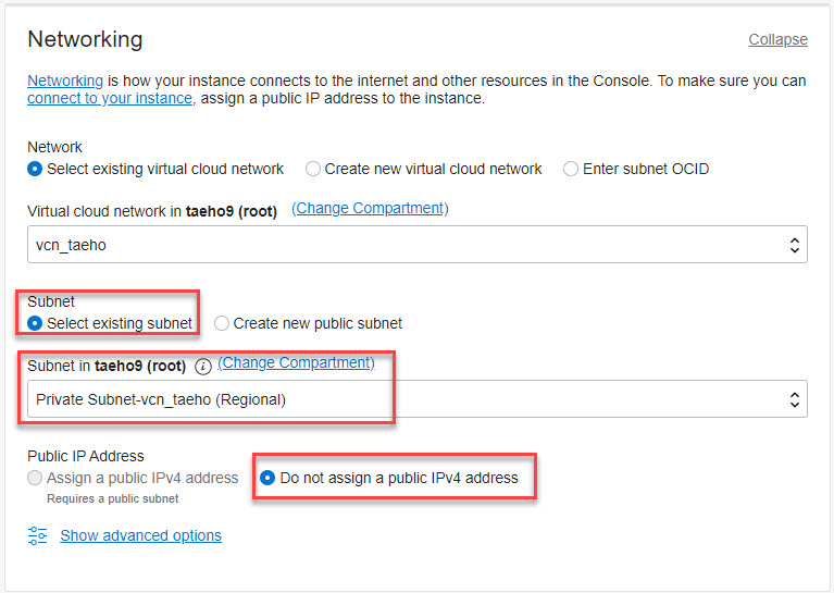 Oracle Cloud의 Private Subnet을 선택, Public IP not assign