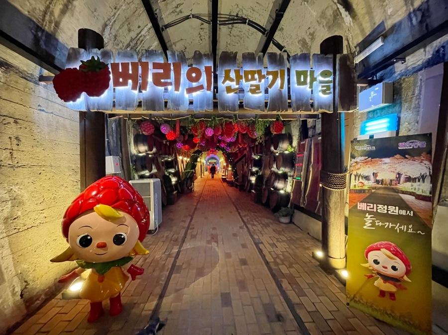 김해 레일파크 와인동굴 와인바 와인 시음 포토존 조명 경치 컨셉 전시회 박물관 포토스팟 명소 인생샷