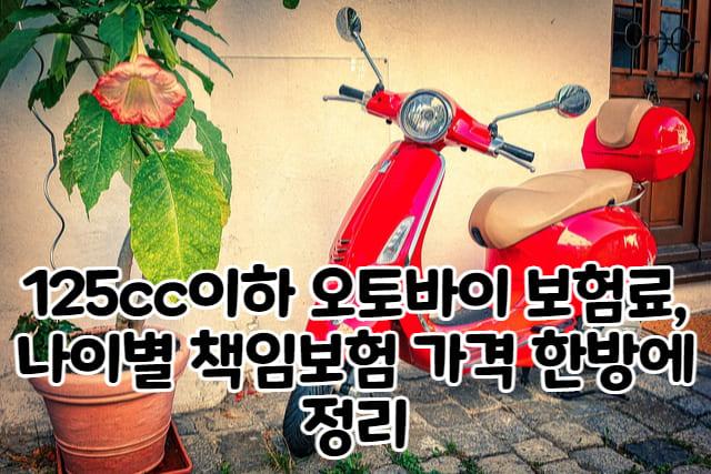 오토바이 보험료 가격