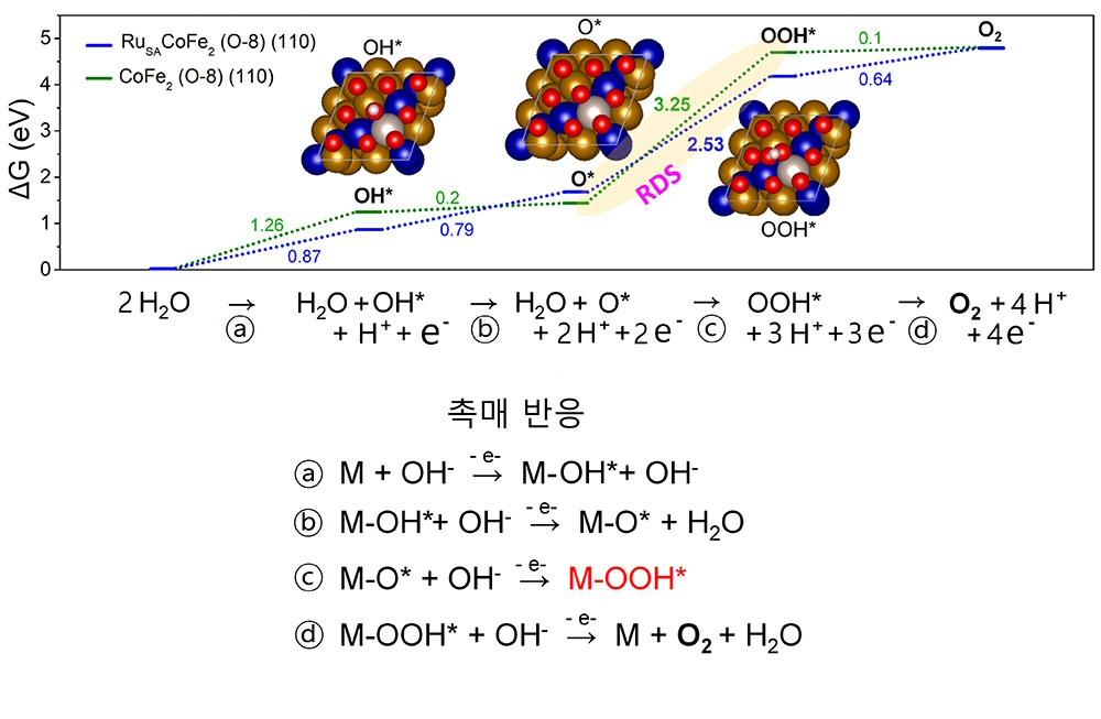 ▲ 산소 발생 반응 메커니즘