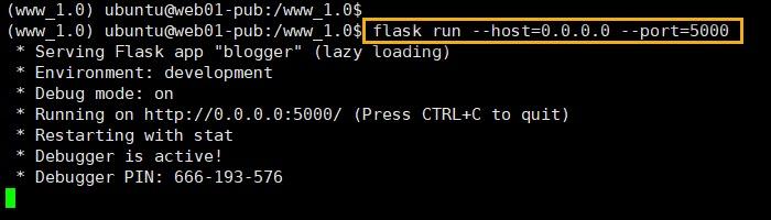 Flask 웹 애플리케이션 실행