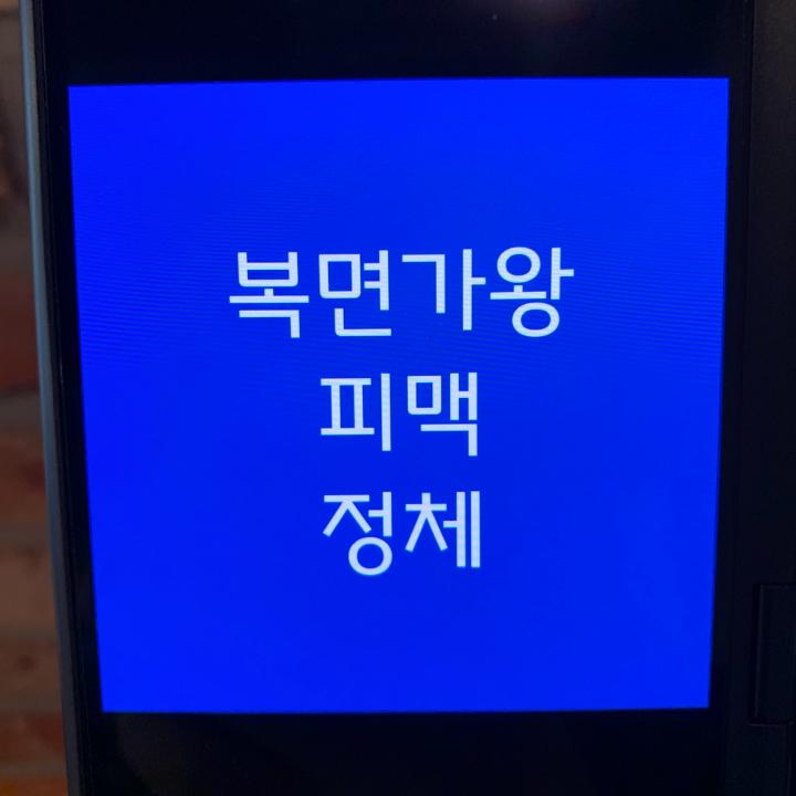 복면가왕-피맥-정체