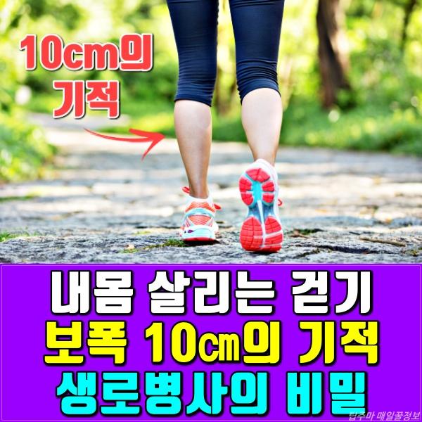 생로병사의 비밀, 보폭 10cm 더 넓혀 걷기 운동 효과, 건강, 팁줌마 매일꿀정보