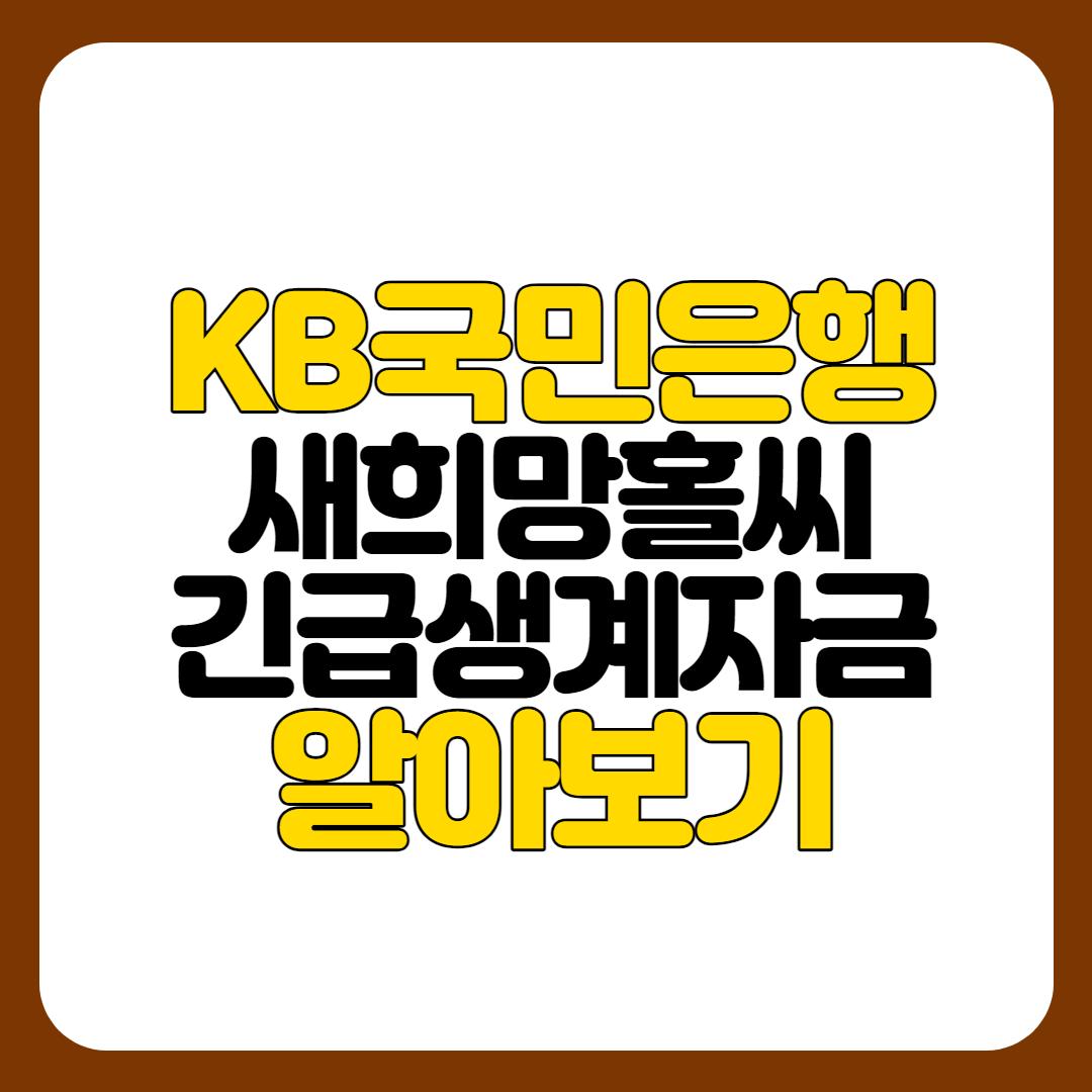 KB국민은행 새희망홀씨 긴급생계자금