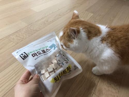 고양이간식후기