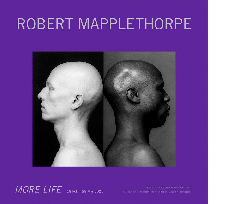Robert Mapplethorpe : More Life