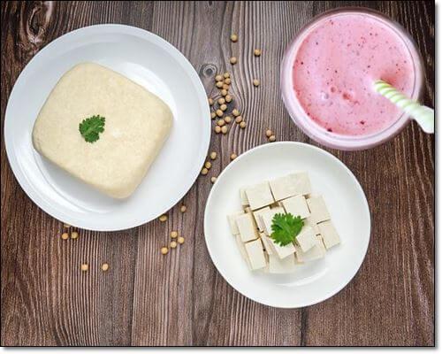 단백질식품