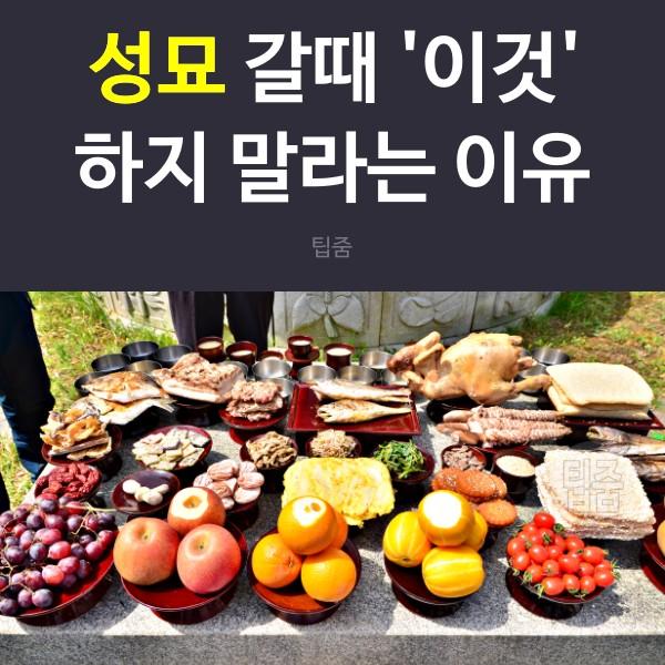 명절 성묘 음식, 생활 팁줌 매일꿀정보
