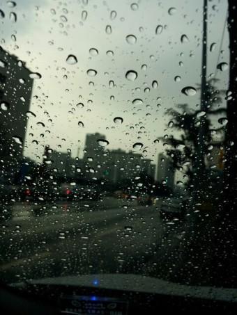 오늘 비가 오네요