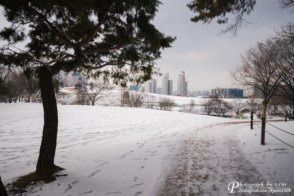 눈내린 올림픽공원