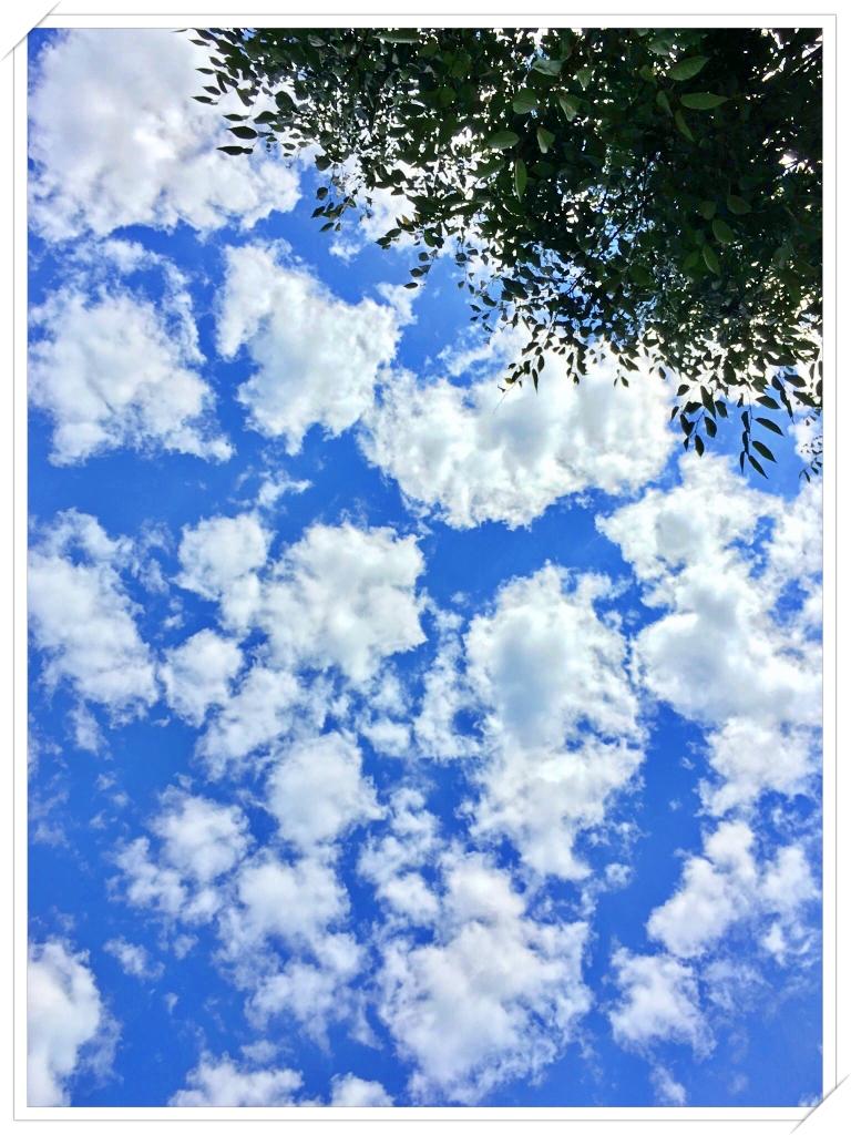 [詩] 너의 하늘, 나의 하늘