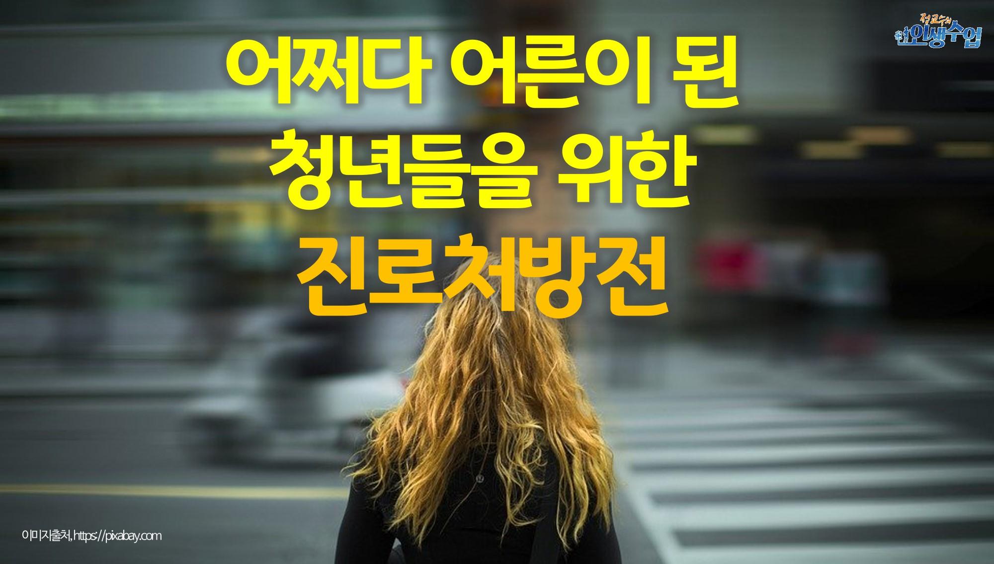 어쩌다 어른이 된 대한민국 청년들을 위한 진로처방전