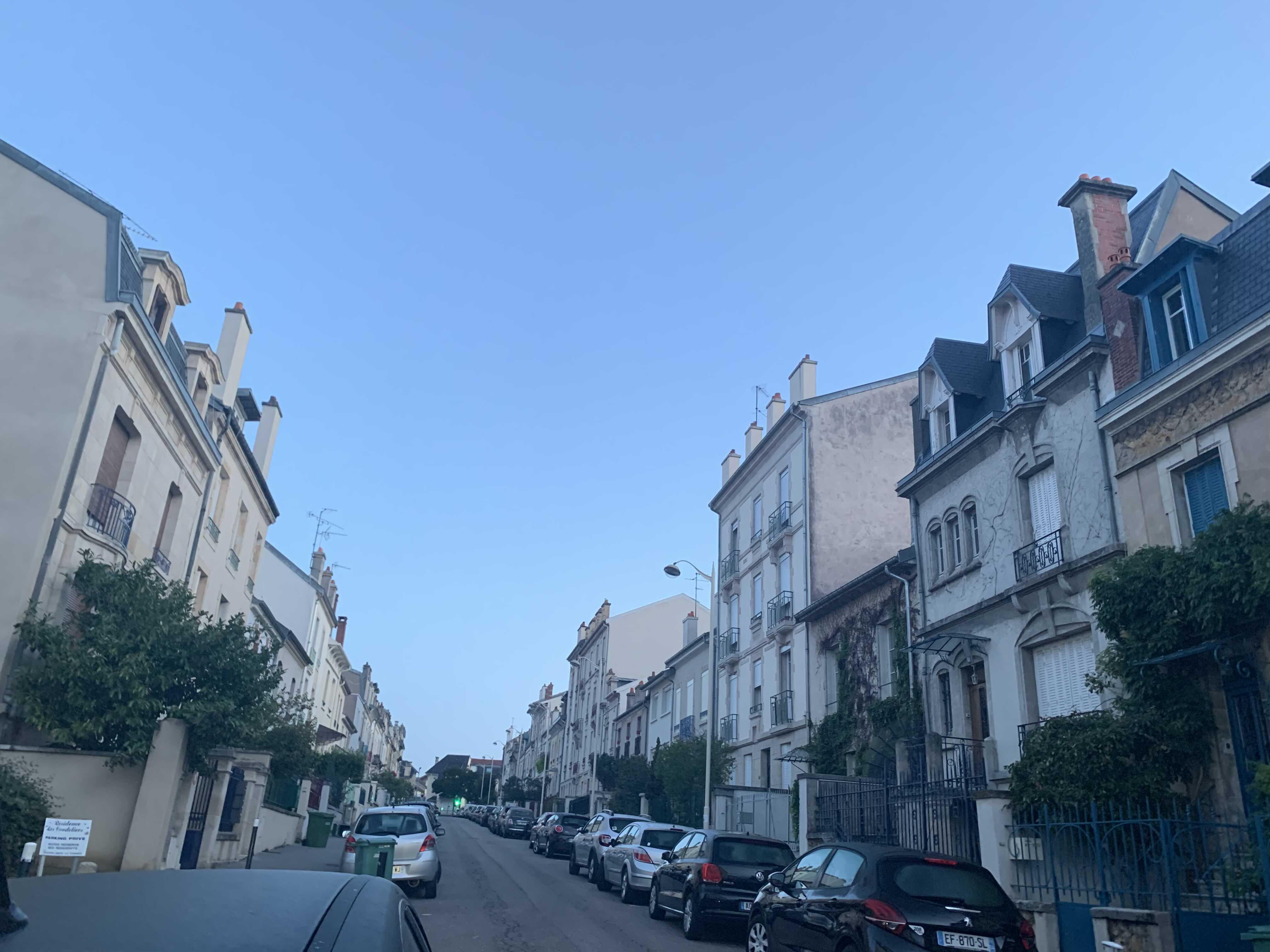 파리에 있는 캣 브리더 방문기 (아깽이들 천국.gif)