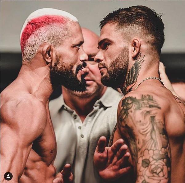 [UFC 매치업 뉴스] 데이비슨 피게이레도 VS 코디 가브란트, 발렌티나 쉐브첸코 VS 제니퍼 마이아 UFC255에서 격돌