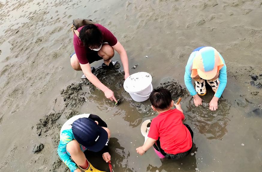 진산어촌계 조개잡이 체험