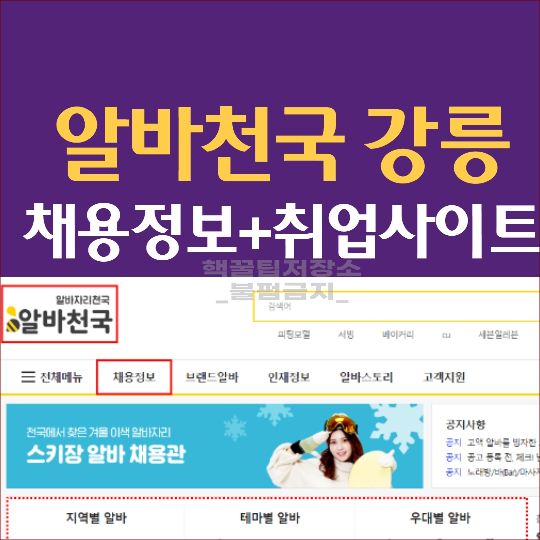 알바천국 강릉 채용정보 및 활용방법