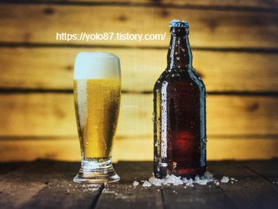 맥주심리테스트