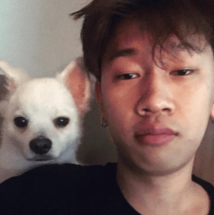 크러쉬-반려견-두유-강아지